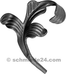 Picture of ornamental leaf 33002